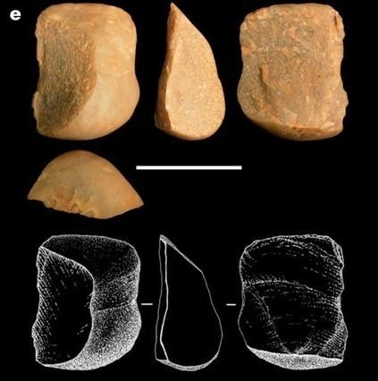 Estos monos crean herramientas de piedra como nuestros primeros antepasados | Arqueología, Historia Antigua y Medieval - Archeology, Ancient and Medieval History byTerrae Antiqvae | Scoop.it