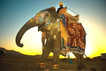 India Vacations Packages   India Travel Package   Scoop.it