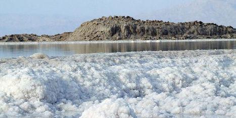 Quand la mer Morte est-elle morte? | Tout fout le camp | Scoop.it