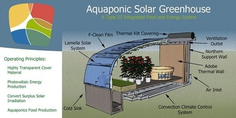 Aquaponic Solar Gewächshaus - lugfoto DE | world as cohabitat | Scoop.it