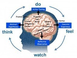 4MAT Train-the-Trainer: How Learning Happens | Learning, Brain & Cognitive Fitness | Scoop.it