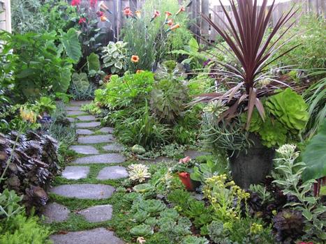 Consejos y tips para un jardín ecológico | Agua | Scoop.it