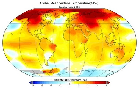 First half of 2016 hit record-setting global warmth In 100 years nobody reads this, sixth #extinction | Limitless learning Universe | Scoop.it