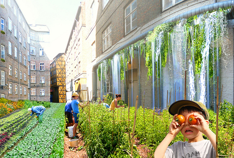 L'agriculture urbaine boostée par le numérique | Say Yess | Lateral Thinking Knowledge | Scoop.it