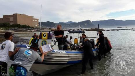 Divers Rate 2014 Cape Town Dive Festival a Huge Success! | Indigo Scuba | Indigo Scuba | Scoop.it