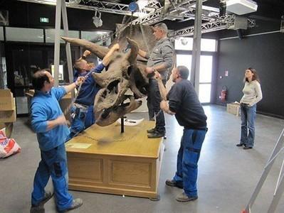 L'expo « Qui veut la peau des dinosaures » fait ses valises , Villers-sur-Mer 05/04/2013 - ouest-france.fr | Office de Tourisme et d'Animation de Villers-sur-Mer | Scoop.it