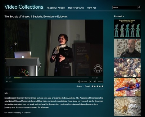 Online Museums You Can Explore for Free | Curriculum resource reviews | Scoop.it