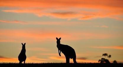 Tip tip về các hoạt động ngoại khóa cho du học sinh Úc   Ở ngôi làng thế giới   Scoop.it