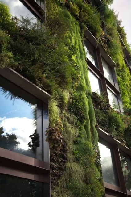 Four Environmental Innovations that have Revolutionized Architecture | AP Human Geography Education | Scoop.it