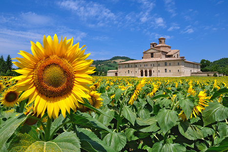 Marche: Italy's Hidden Region Waiting to be Explored | Le Marche another Italy | Scoop.it