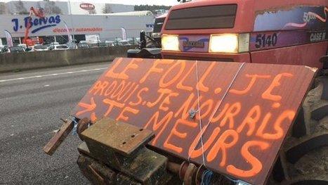 Que disent les politiques de la crise agricole? - France 3 Bretagne   Le Fil @gricole   Scoop.it