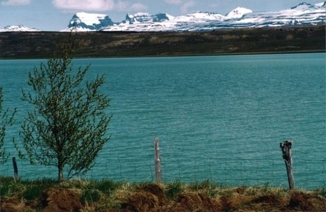 Iceland Dam Project Plays Dice With Nature, And Loses | Global resource plunder and poisoning of natural resources | Scoop.it
