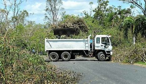 Council - we can't compromise community safety due to trees - Rockhampton Morning Bulletin | QTRA | Scoop.it