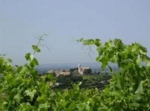 La vigne pédagogique de Cairanne reçoit le prix René Renou | Oenotourisme | Scoop.it