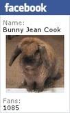Bunny's Blog: Favorite Video Friday: Barron & Bristol's Big Day   Pet News   Scoop.it