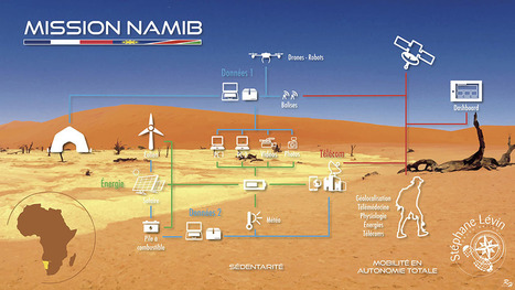Chaleur, scorpions et tempête de sable... Je vais vivre 121 jours dans le désert du Namib | EntomoScience | Scoop.it