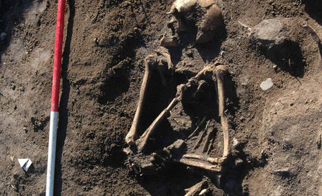 Viking skeleton found on Anglesey, Wales | Archaeology News | Scoop.it