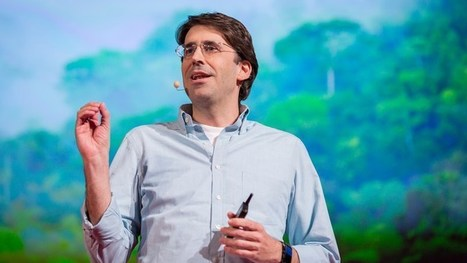 Hopeful lessons from the battle to save rainforests | Green Geek News | Scoop.it