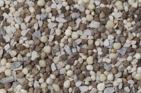 Weak fertilizer outlook prompts producers to cut profit hopes | Grain du Coteau : News ( corn maize ethanol DDG soybean soymeal wheat livestock beef pigs canadian dollar) | Scoop.it
