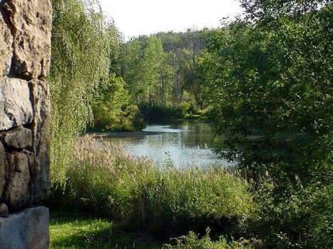 Walking meditation can lead to inner peace - Poughkeepsie Journal | Breathwork | Scoop.it