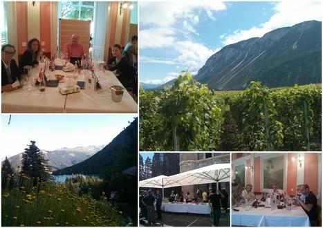 OIV - 17ème édition du concours Mondial des Pinots | Winemak-in | Scoop.it