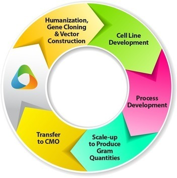 Process Development Services | serviceprovider | Scoop.it