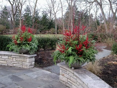 In designing holiday planters, consider a break from tradition | Horticulture | Scoop.it