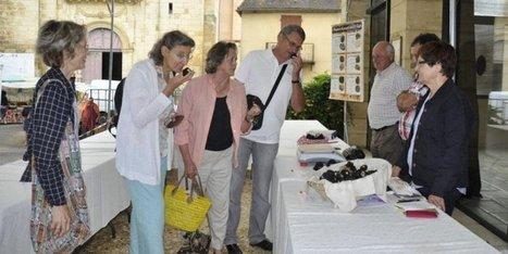 Les premières truffes d'été sur le marché de référence à Sainte-Alvère (24) | Agriculture en Dordogne | Scoop.it