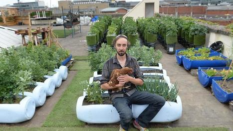Dublin rooftop Urban Farm showcases a growing movement | Urban Agriculture | Scoop.it