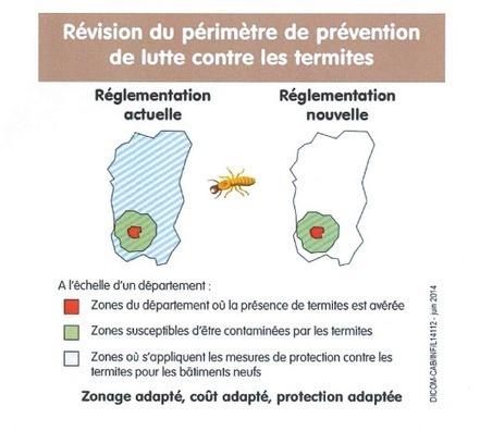 Lutte contre les termites : l'application du dernier décret pose problème (SNAPB) : 21-01-2015 - Batiweb.com | La revue de presse de l'immobilier | Scoop.it