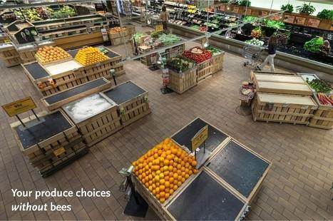 À quoi ressembleraient nos supermarchés si les abeilles disparaissaient? | Chimie verte et agroécologie | Scoop.it
