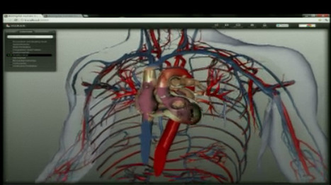 A Digital Revolution for Studying Human Anatomy | Health and Ageing | Scoop.it