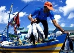 Pesca artesanal, la única alternativa sostenible | Planeta Tierra | Scoop.it