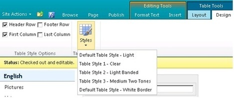 SharePoint 2010 - Create Custom Style for SharePoint Rich Text Editor. - Create Custom Table Style - Leonid Esterlis | SharePoint-tips-and-tricks | Scoop.it