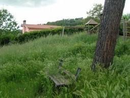 Italia Nostra – Sezione di Pescara | Guardare al futuro senza rinunciare al passato. | Historic Gardens & Botanic Heritage | Scoop.it