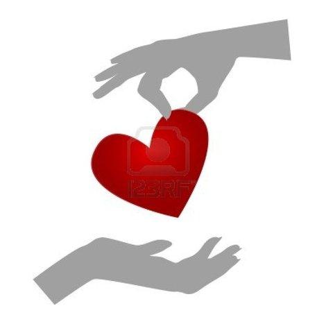 Milano, aggressione col piccone: organi 21enne saranno donati | shopping heaven | Scoop.it