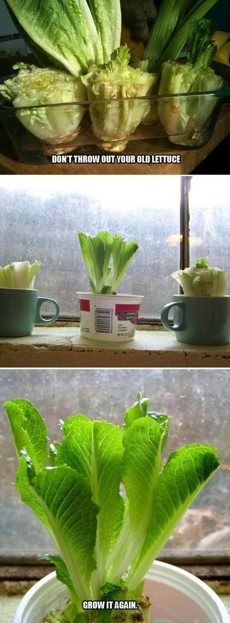 Simple Ideas That Are Borderline Genius - 43 Pics | Life Hacks & Helpers - Reference & Research | Scoop.it