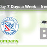 Pest Control London: Removal, Prevention Environmental Services