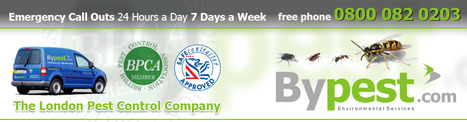 Pest Control London| Environmental Extermination and Pest Control Services – Bypest | Pest Control London: Removal, Prevention Environmental Services | Scoop.it