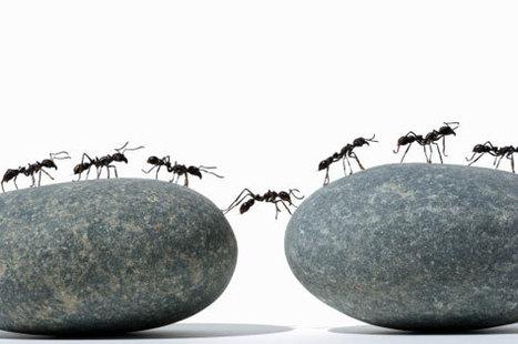 Comment retrouver le sens du collectif au travail | Intelligence collective et facteur humain | Scoop.it