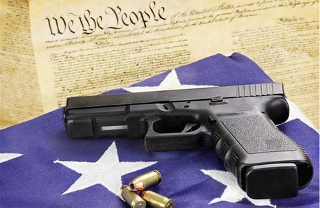 Senate Shoots Down Four New Gun Control Laws | Liberty Revolution | Scoop.it