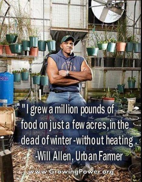 Urban Farming: Man Grows A Million Pounds Of Food On A Few Acres In The Dead Of Winter With No Heating | Survival | Vertical Farm - Food Factory | Scoop.it