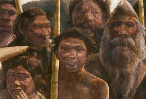 Discovery of oldest-yet human DNA muddies family tree - Alexandria Town Talk | personalized medicine | Scoop.it