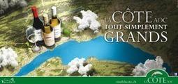 Une nouvelle campagne de communication lumineuse ... - Map SA | le Vin : de la stratégie à la communication | Scoop.it
