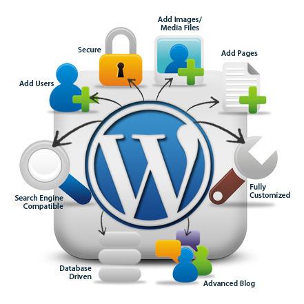Wordpress Design Company in Los Angeles | Web Design and SEO Company in Los Angeles | Scoop.it