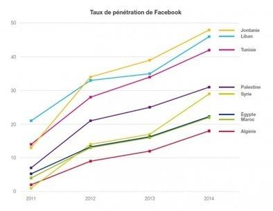 Médias arabes en ligne: Liban en pointe, Algérie à la traine - Rue89 | Revolution Digitale Algérienne | Scoop.it