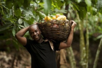 Latest Fairtrade cocoa report: Farmers investing in change | Fairly Traded News | Scoop.it