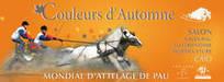 Mondial d'Attelage de Pau-Haras-nationaux | Couleurs d'Automne | Scoop.it