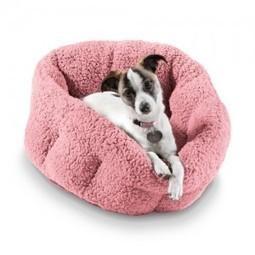 Dish' in Dog Supplies Online | Scoop.it