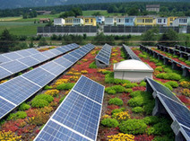 Green Roofs Boost Photovoltaic Panels   Market Growing   Scoop.it